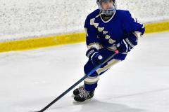 CIAC Ice Hockey; L.H.- H-K, Cogin. 8 vs Newtown 1 - Photo # (353)
