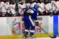 CIAC Ice Hockey; L.H.- H-K, Cogin. 8 vs Newtown 1 - Photo # (359)