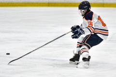 CIAC Ice Hockey; L.H.- H-K, Cogin. 8 vs Newtown 1 - Photo # (360)