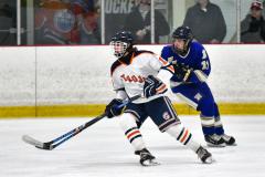 CIAC Ice Hockey; L.H.- H-K, Cogin. 8 vs Newtown 1 - Photo # (367)