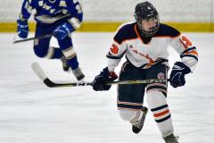 CIAC Ice Hockey; L.H.- H-K, Cogin. 8 vs Newtown 1 - Photo # (372)