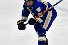 CIAC Ice Hockey; L.H.- H-K, Cogin. 8 vs Newtown 1 - Photo # (376)