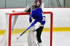 CIAC Ice Hockey; L.H.- H-K, Cogin. 8 vs Newtown 1 - Photo # (382)