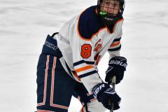 CIAC Ice Hockey; L.H.- H-K, Cogin. 8 vs Newtown 1 - Photo # (388)