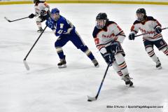CIAC Ice Hockey; L.H.- H-K, Cogin. 8 vs Newtown 1 - Photo # (415)