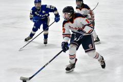 CIAC Ice Hockey; L.H.- H-K, Cogin. 8 vs Newtown 1 - Photo # (416)