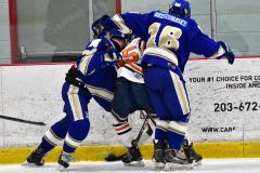 CIAC Ice Hockey; L.H.- H-K, Cogin. 8 vs Newtown 1 - Photo # (446)