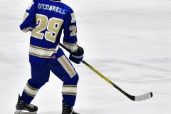 CIAC Ice Hockey; L.H.- H-K, Cogin. 8 vs Newtown 1 - Photo # (477)