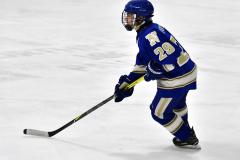 CIAC Ice Hockey; L.H.- H-K, Cogin. 8 vs Newtown 1 - Photo # (479)