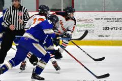 CIAC Ice Hockey; L.H.- H-K, Cogin. 8 vs Newtown 1 - Photo # (485)