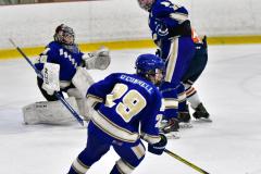 CIAC Ice Hockey; L.H.- H-K, Cogin. 8 vs Newtown 1 - Photo # (487)
