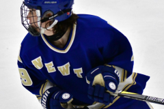 CIAC Ice Hockey; L.H.- H-K, Cogin. 8 vs Newtown 1 - Photo # (491)