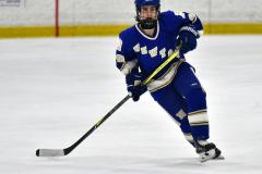 CIAC Ice Hockey; L.H.- H-K, Cogin. 8 vs Newtown 1 - Photo # (502)