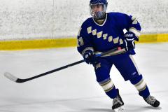 CIAC Ice Hockey; L.H.- H-K, Cogin. 8 vs Newtown 1 - Photo # (511)