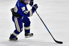 CIAC Ice Hockey; L.H.- H-K, Cogin. 8 vs Newtown 1 - Photo # (514)