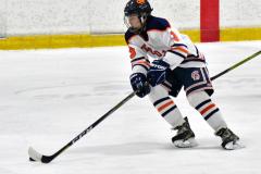 CIAC Ice Hockey; L.H.- H-K, Cogin. 8 vs Newtown 1 - Photo # (521)