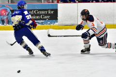 CIAC Ice Hockey; L.H.- H-K, Cogin. 8 vs Newtown 1 - Photo # (523)