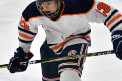 CIAC Ice Hockey; L.H.- H-K, Cogin. 8 vs Newtown 1 - Photo # (527)