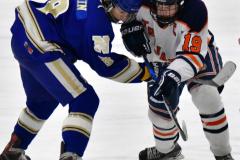 CIAC Ice Hockey; L.H.- H-K, Cogin. 8 vs Newtown 1 - Photo # (540)