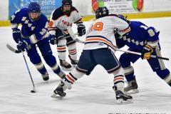 CIAC Ice Hockey; L.H.- H-K, Cogin. 8 vs Newtown 1 - Photo # (543)