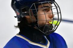 CIAC Ice Hockey; L.H.- H-K, Cogin. 8 vs Newtown 1 - Photo # (586)