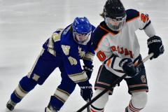CIAC Ice Hockey; L.H.- H-K, Cogin. 8 vs Newtown 1 - Photo # (615)