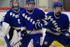 CIAC Ice Hockey; L.H.- H-K, Cogin. 8 vs Newtown 1 - Photo # (643)