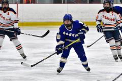 CIAC Ice Hockey; L.H.- H-K, Cogin. 8 vs Newtown 1 - Photo # (662)