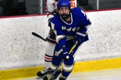 CIAC Ice Hockey; L.H.- H-K, Cogin. 8 vs Newtown 1 - Photo # (679)