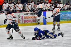 CIAC Ice Hockey; L.H.- H-K, Cogin. 8 vs Newtown 1 - Photo # (687)