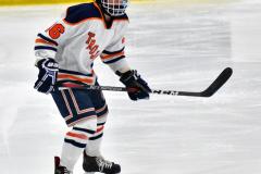 CIAC Ice Hockey; L.H.- H-K, Cogin. 8 vs Newtown 1 - Photo # (691)