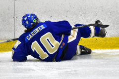 CIAC Ice Hockey; L.H.- H-K, Cogin. 8 vs Newtown 1 - Photo # (699)