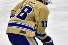 CIAC Ice Hockey; Newtown 2 vs. Daniel Hand 6 - Photo # 249