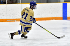 CIAC Ice Hockey; Newtown 2 vs. Daniel Hand 6 - Photo # 266