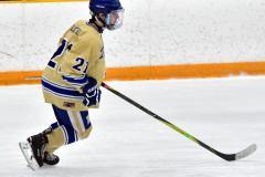 CIAC Ice Hockey; Newtown 2 vs. Daniel Hand 6 - Photo # 267