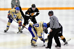CIAC Ice Hockey; Newtown 2 vs. Daniel Hand 6 - Photo # 498
