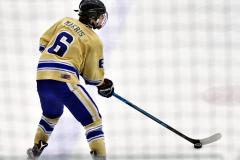 CIAC Ice Hockey; Newtown 2 vs. Daniel Hand 6 - Photo # 503