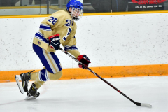 CIAC Ice Hockey; Newtown 2 vs. Daniel Hand 6 - Photo # 506