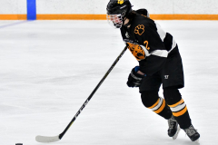 CIAC Ice Hockey; Newtown 2 vs. Daniel Hand 6 - Photo # 512