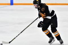 CIAC Ice Hockey; Newtown 2 vs. Daniel Hand 6 - Photo # 513