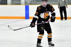 CIAC Ice Hockey; Newtown 2 vs. Daniel Hand 6 - Photo # 514
