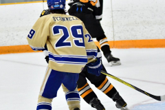 CIAC Ice Hockey; Newtown 2 vs. Daniel Hand 6 - Photo # 517