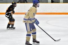 CIAC Ice Hockey; Newtown 2 vs. Daniel Hand 6 - Photo # 524