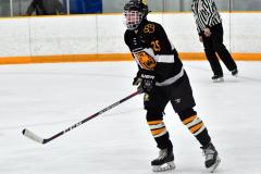 CIAC Ice Hockey; Newtown 2 vs. Daniel Hand 6 - Photo # 527