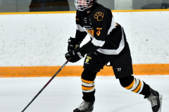 CIAC Ice Hockey; Newtown 2 vs. Daniel Hand 6 - Photo # 539