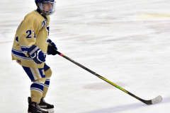 CIAC Ice Hockey; Newtown 2 vs. Daniel Hand 6 - Photo # 543