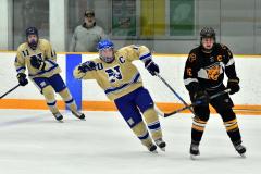 CIAC Ice Hockey; Newtown 2 vs. Daniel Hand 6 - Photo # 545