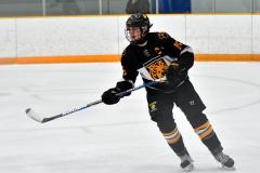 CIAC Ice Hockey; Newtown 2 vs. Daniel Hand 6 - Photo # 546