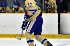 CIAC Ice Hockey; Newtown 2 vs. Daniel Hand 6 - Photo # 801