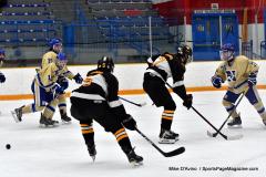 CIAC Ice Hockey; Newtown 2 vs. Daniel Hand 6 - Photo # 803